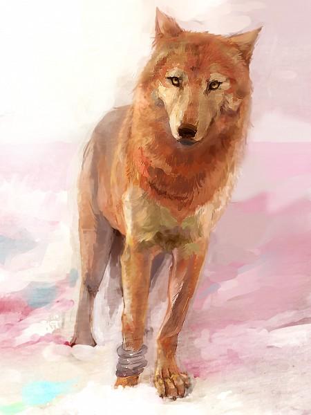 Toboe - Wolf's Rain
