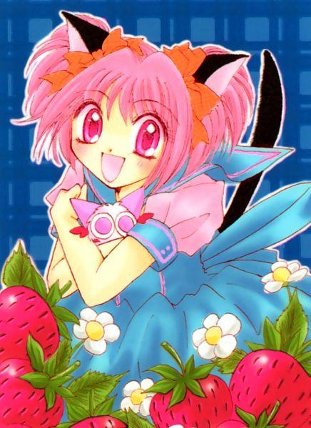 Tags: Anime, Ikumi Mia, Tokyo Mew Mew, Masha, Momomiya Ichigo, Scan, Manga Color, Official Art