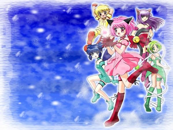 Tags: Anime, Kitayama Mari, Tokyo Mew Mew, Pudding Fon, Mew Zakuro, Aizawa Mint, Mew Lettuce, Momomiya Ichigo, Fujiwara Zakuro, Mew Mint, Mew Pudding, Mew Ichigo, Midorikawa Lettuce
