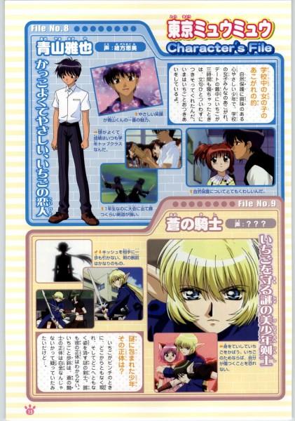 Tags: Anime, Tokyo Mew Mew, Tokyo Mew Mew Official Fanbook, Blue Knight, Mew Ichigo, Aoyama Masaya, Ikisatashi Quiche, Momomiya Ichigo, Tail Ornament