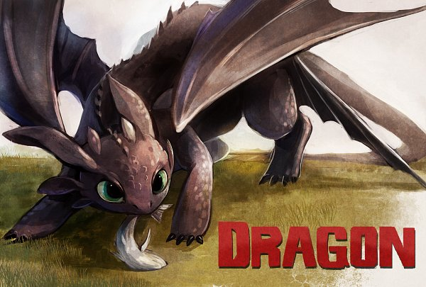 Tags: Anime, Aka11tonbo, How to Train Your Dragon, Toothless, Gray Sky, Fanart From Pixiv, Facebook Cover, Pixiv, Fanart