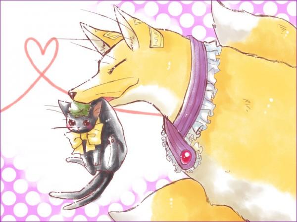 Tags: Anime, Kirino (Artist), Touhou, Chen, Yakumo Ran, Chen (Cat), Yakumo Ran (Fox), Pixiv, Fanart
