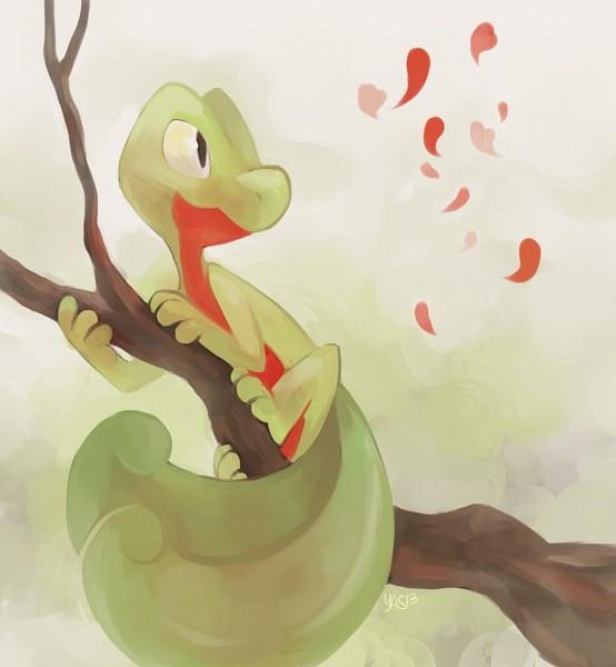Treecko - Pokémon