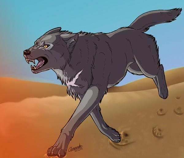 Tags: Anime, Wolf's Rain, Tsume