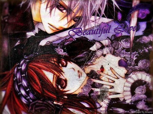 Tags: Anime, Hino Matsuri, Vampire Knight, Kiryuu Zero, Yuki Cross, Wallpaper