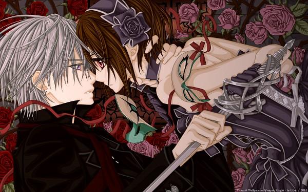 Tags: Anime, Hino Matsuri, Vampire Knight, Yuki Cross, Kiryuu Zero, 2560x1600 Wallpaper, HD Wallpaper, Vector, Wallpaper