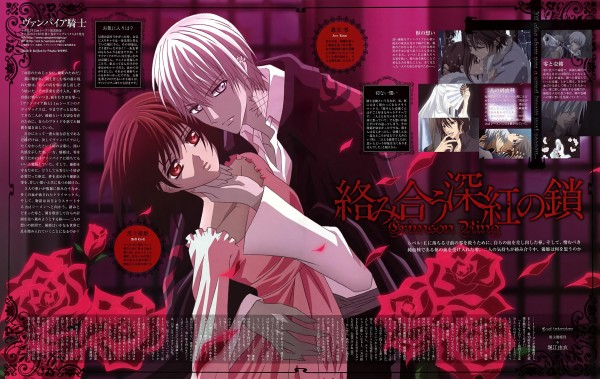Tags: Anime, Vampire Knight, Yuki Cross, Kiryuu Zero, Official Art