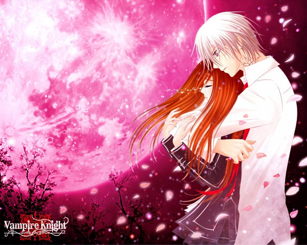 Tags: Anime, Vampire Knight, Yuki Cross, Kiryuu Zero, Red Moon, Wallpaper