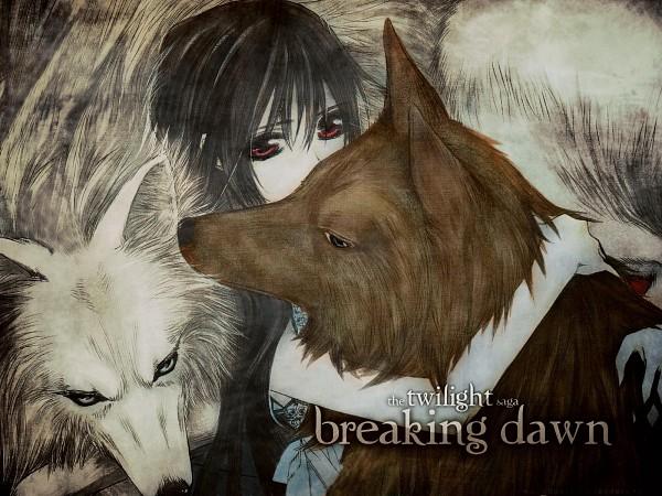 Tags: Anime, Vampire Knight, Kuran Kaname, Yuki Cross, Kiryuu Zero, Twilight (Parody), Artist Request, Wallpaper