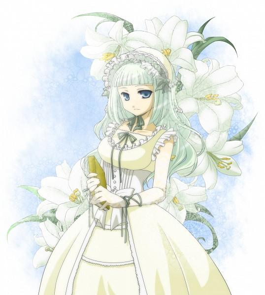 White Lily - White Flower