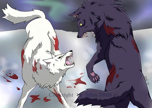 Tags: Anime, Wolf's Rain, Kiba (Wolf's Rain), Darcia, Tsume
