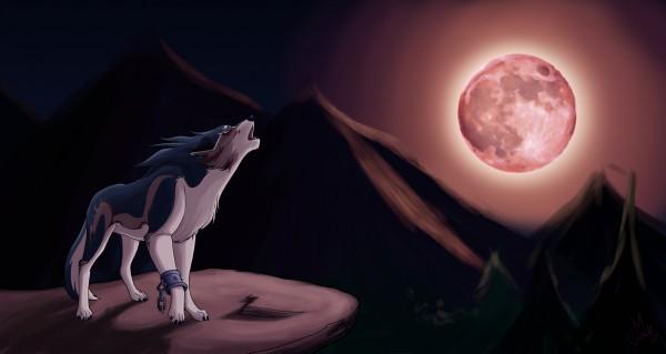 Wolf Link - Link (Twilight Princess)