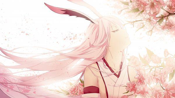 Tags: Anime, Pixiv Id 13183054, Houkai 3rd, Yae Sakura (Houkai Gakuen), Wallpaper, Houkai 3rd Illustration Contest
