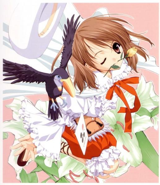 Tags: Anime, Tenhiro Naoto, Sister Princess, Art of Sister Princess I, Yotsuba (Sister Princess), Toucan