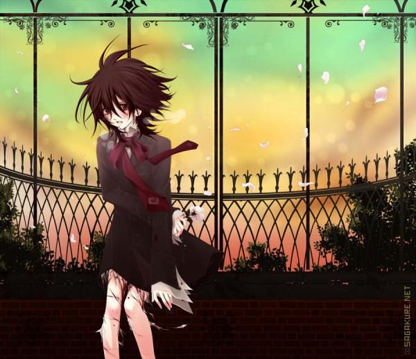 Tags: Anime, Sagakure Moe, Vampire Knight, Yuki Cross, Fanart