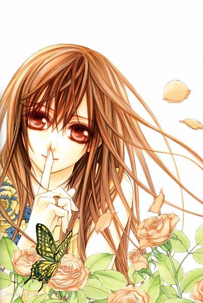 Tags: Anime, Hino Matsuri, Vampire Knight Illustrations, Vampire Knight, Yuki Cross, Mobile Wallpaper