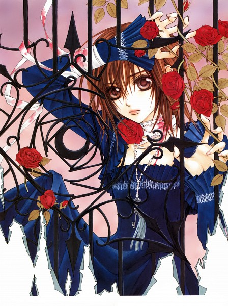 Tags: Anime, Hino Matsuri, Vampire Knight Illustrations, Vampire Knight, Yuki Cross, Gate, Official Art