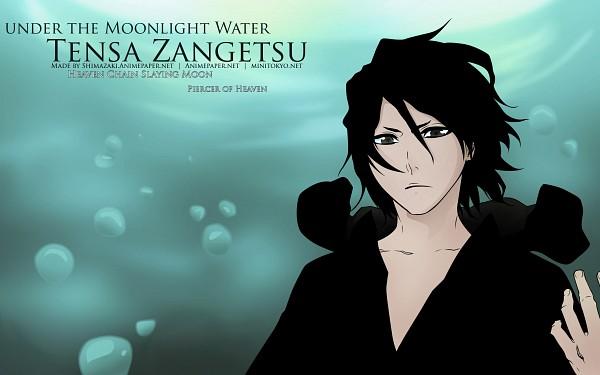 Tags: Anime, BLEACH, Zangetsu, Kurosaki Ichigo, 2560x1600 Wallpaper, Wallpaper, Vector, HD Wallpaper