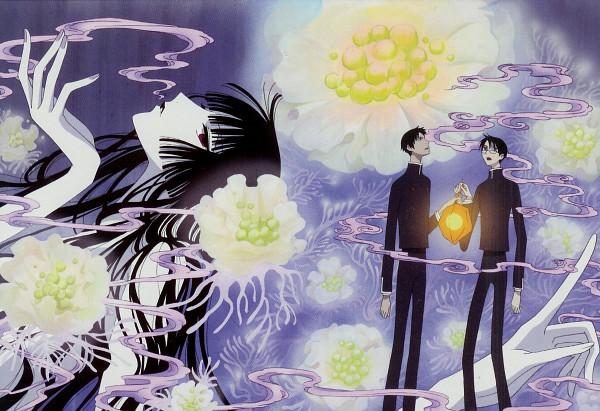 Tags: Anime, xxxHOLiC, Watanuki Kimihiro, Ichihara Yuuko, Doumeki Shizuka, Chinese Lantern (flower), Scan, Official Art